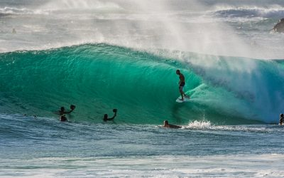 Surf & Law on the Canary Islands II